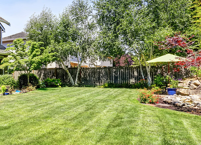 residential-lawn-service-plan